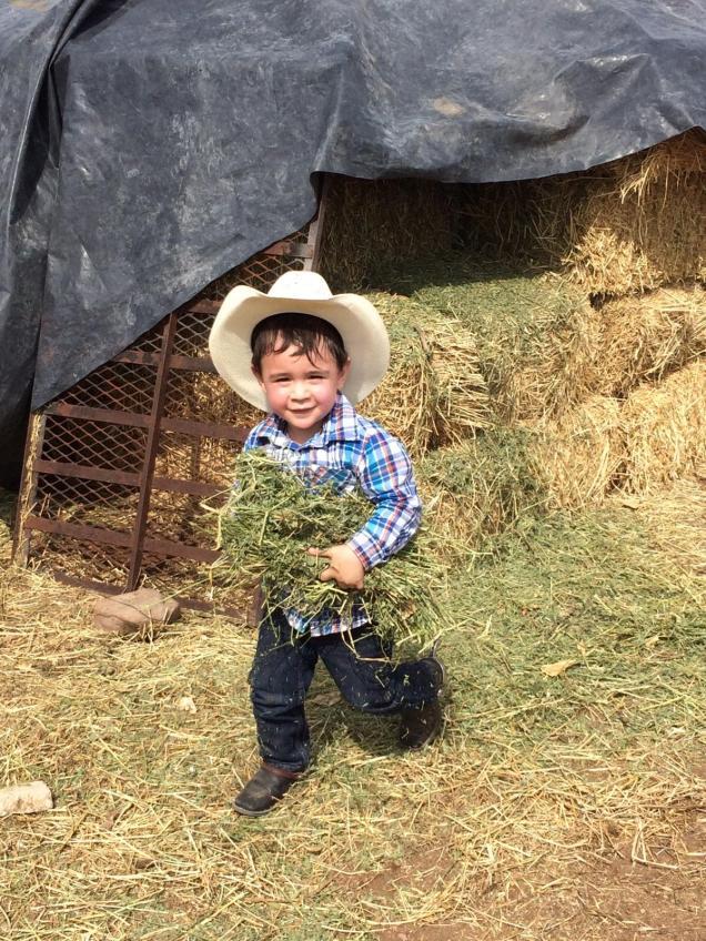 Sam Garcia's son helping at the ranch.