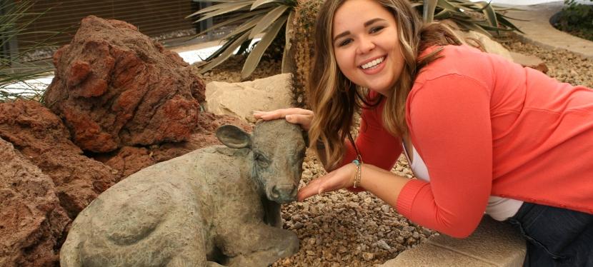 Arizona Beef Council Internship – Sun Devils Love CattleToo