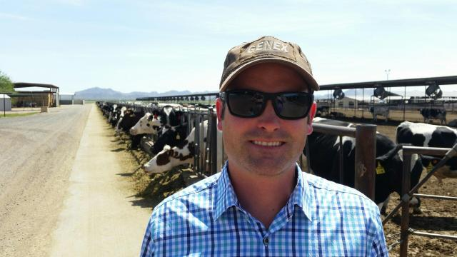 How Does the Dairy Community Fit in the Beef World?