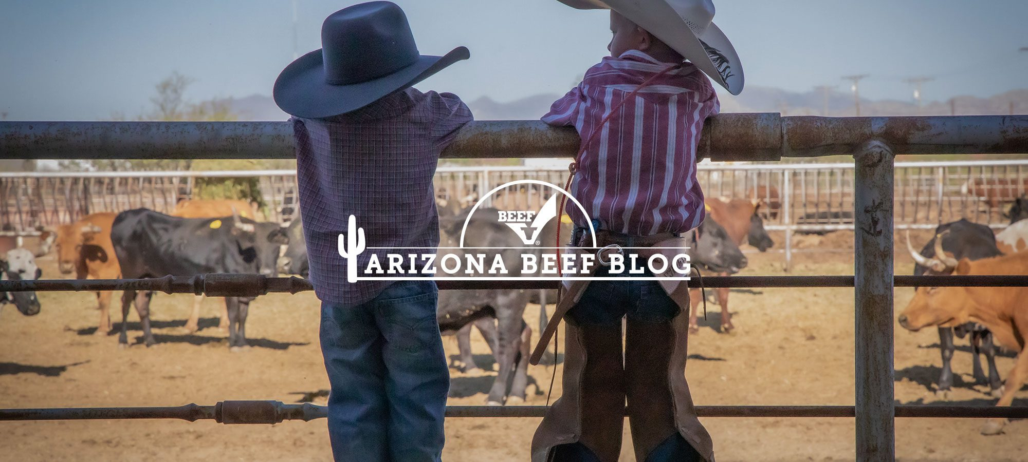 Arizona Beef Blog